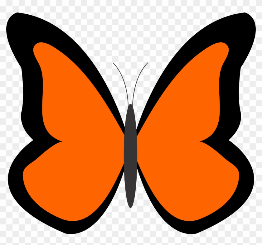 See Here Butterfly Clipart Black And White Outline - Orange Butterfly Clipart #14883