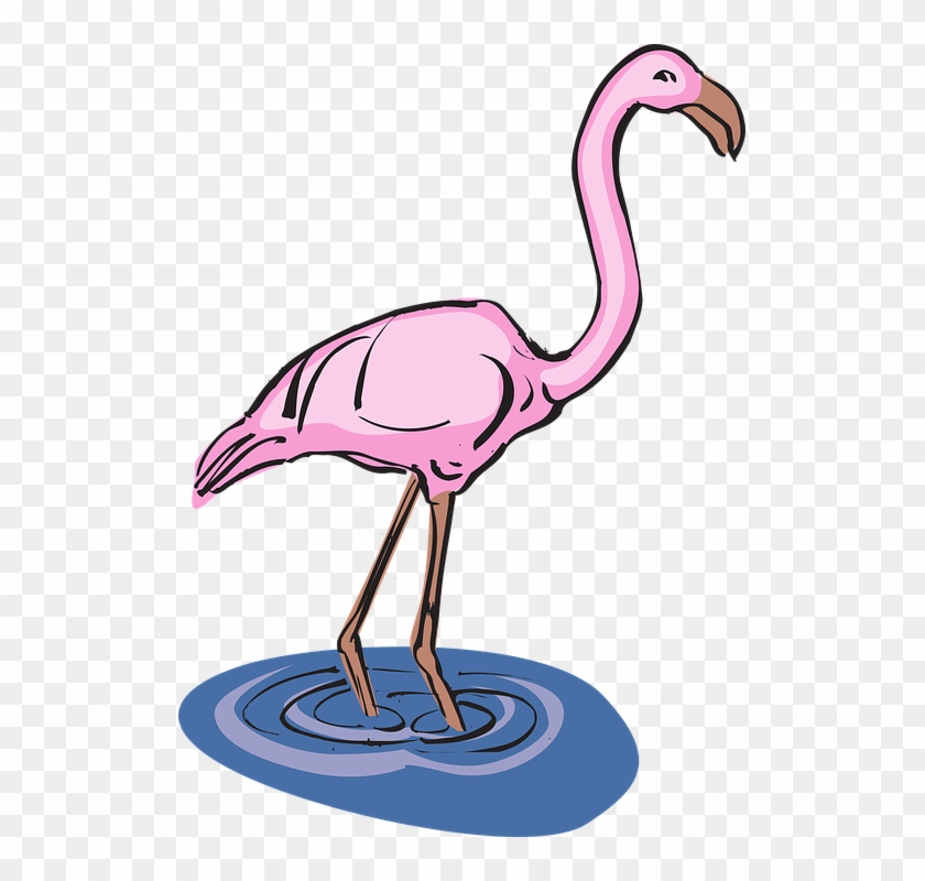 Flamingo In Water Clipart #15891