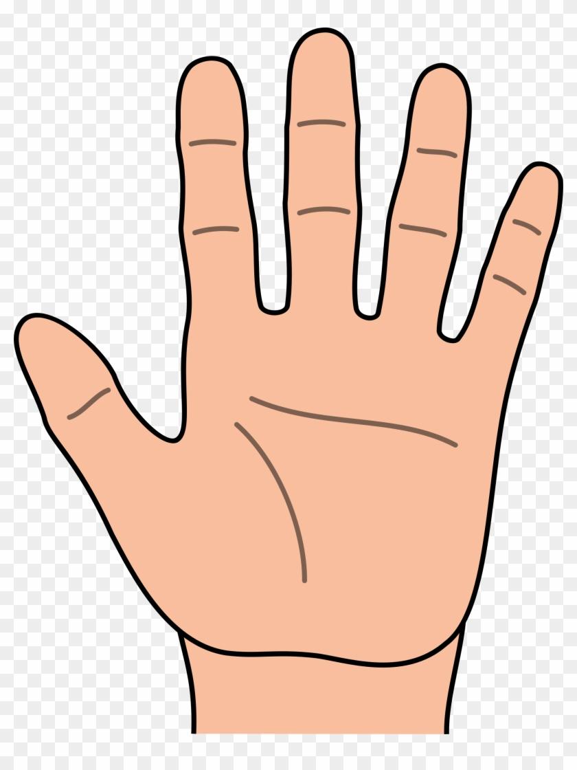 Hand Clip Art - Clipart Hand #16142