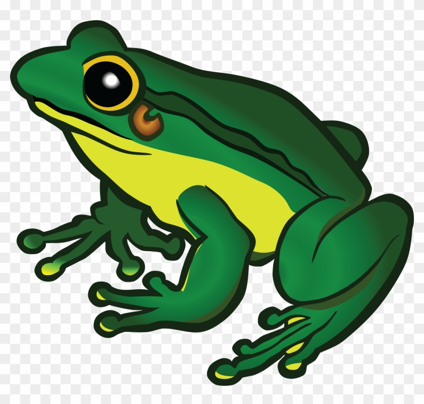 Clipart Of Frog Free A - Frog Png Clipart #16169