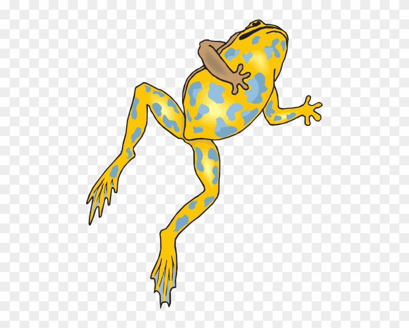 Frog Jumping Transparent Png #16350
