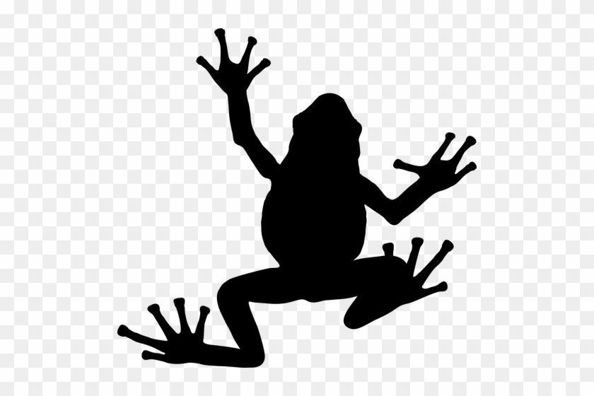 Toad Silhouettes Clipart Clip Art Ai Eps Svgs Jpgs - Silhouette Of A Frog #16447