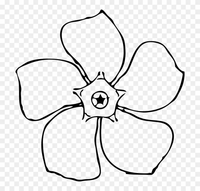 Outline Of A Flower #17049