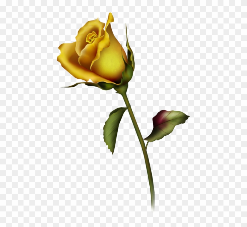 Yellow Rose Clipart Yellow Rose Bud Clip Art Gallery - Rose Buds Tattoo Design #17073