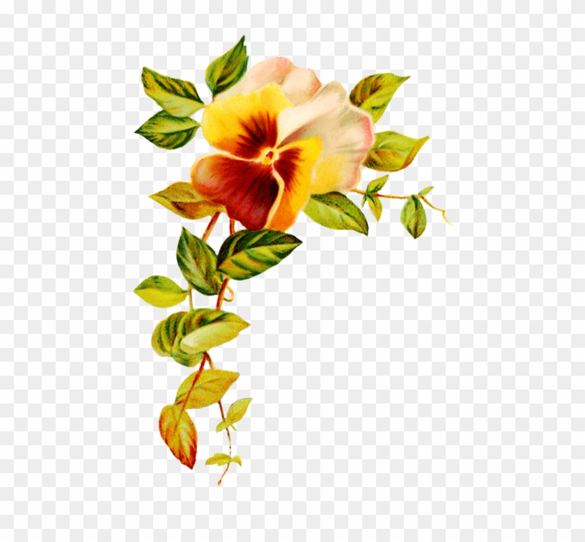 Corner With Pansy Flower Pansy Flower Transparent Background
