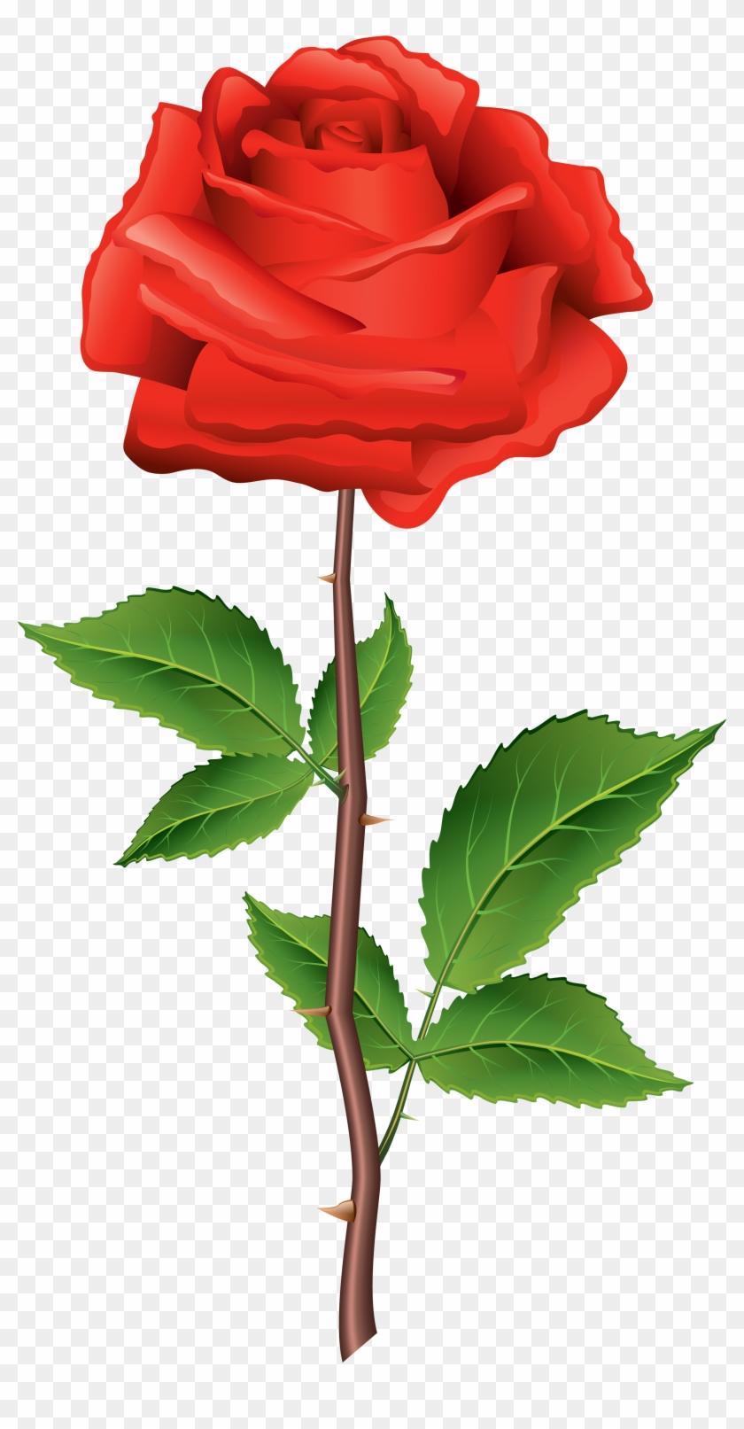 Beautiful Clipart Rose Flower - Rose Clip Art Png #17495