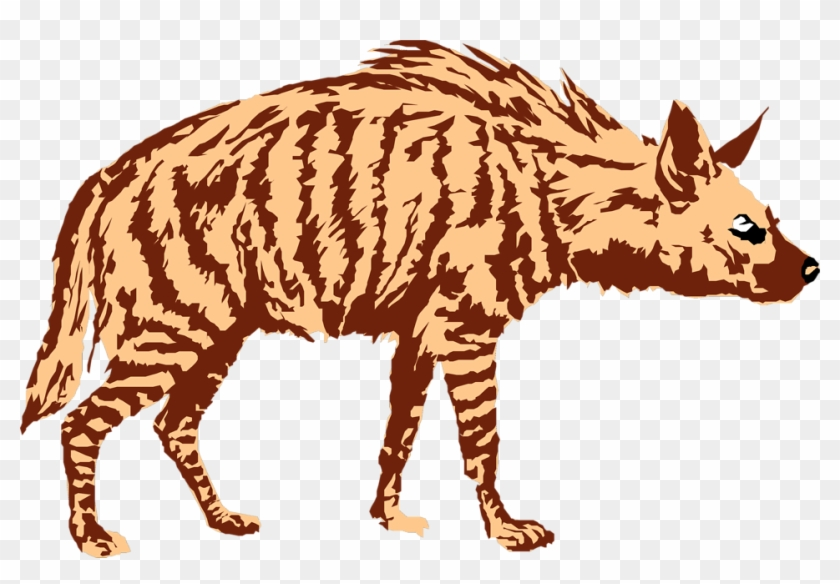 Download Png Image Report - Hyena Clipart No Background #17576
