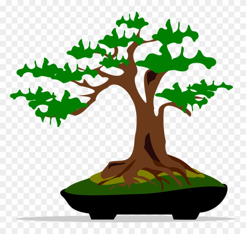 Bonsai Clip Art Flora Nature Plant Tree - Bonsai Clip Art #17617
