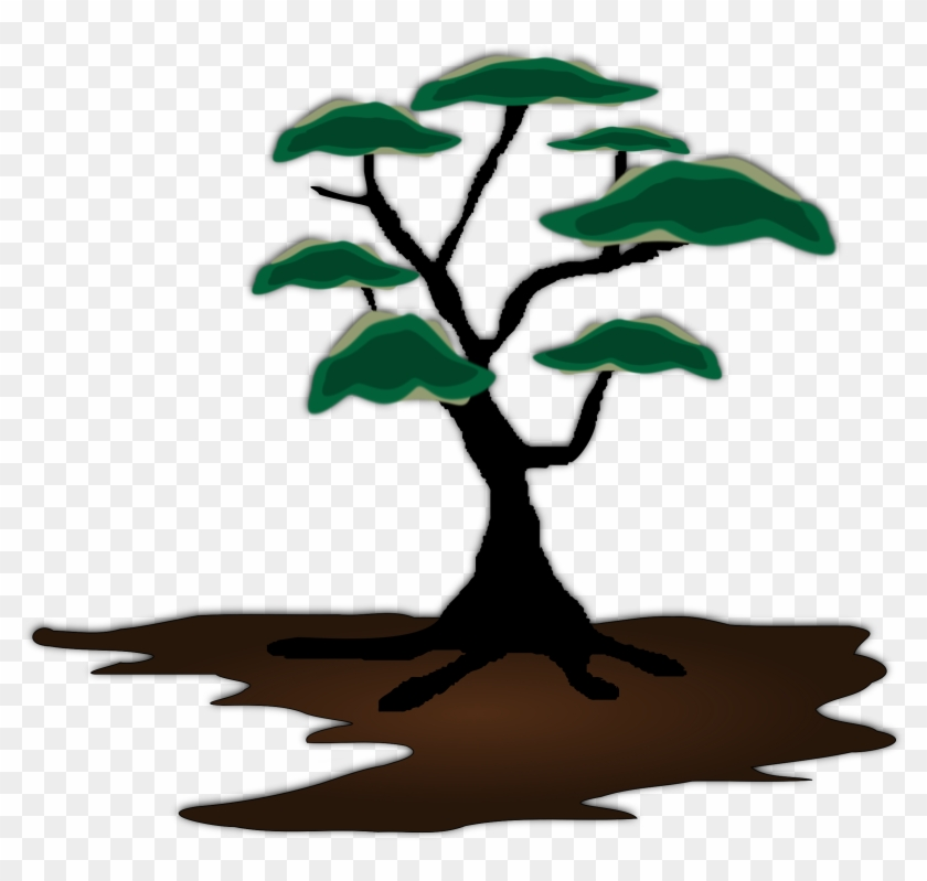 Tree, Exotic, Landscape, Soil, Growing - African Trees Clip Art #17624