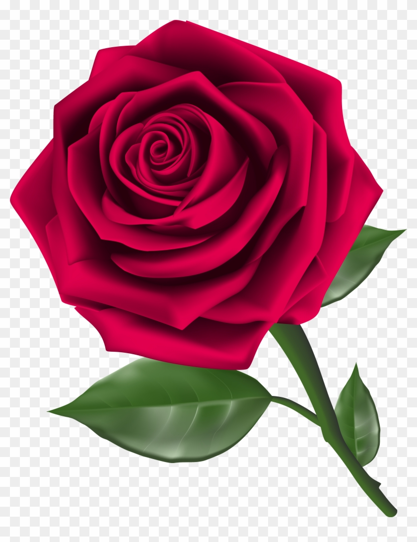 Roses Clip Art - Rose Png #17660