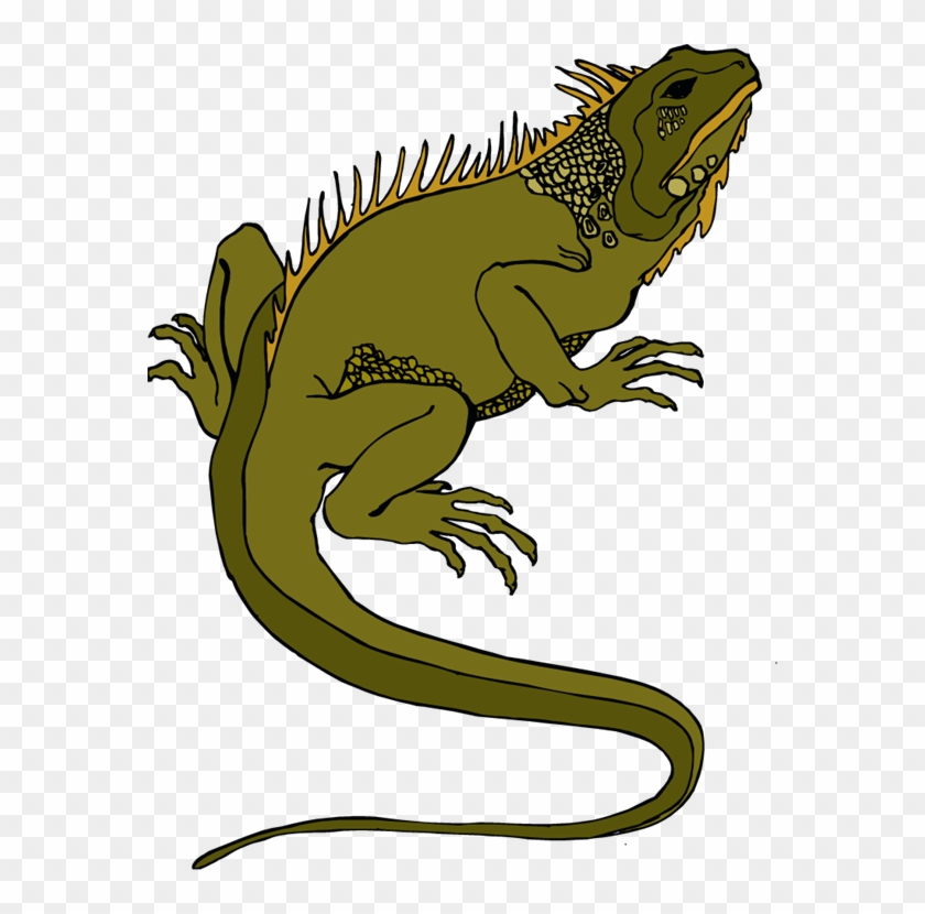 Download Lizard Png Transparent Images Transparent - Reptile Clip Art #17656