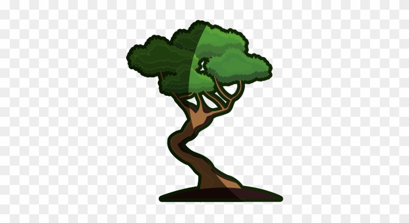 Cartoon Bonsai Tree - Bonsai Tree Cartoon #17657