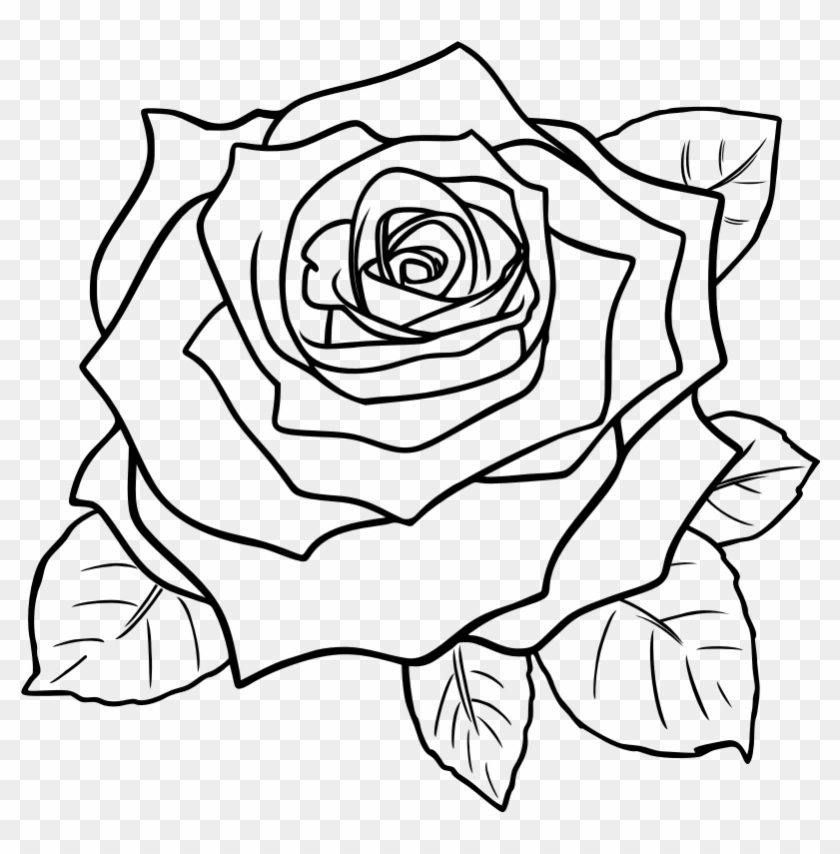 Rose Clipart Black And White Free Clip Art Images - Rose Step By Step #17747