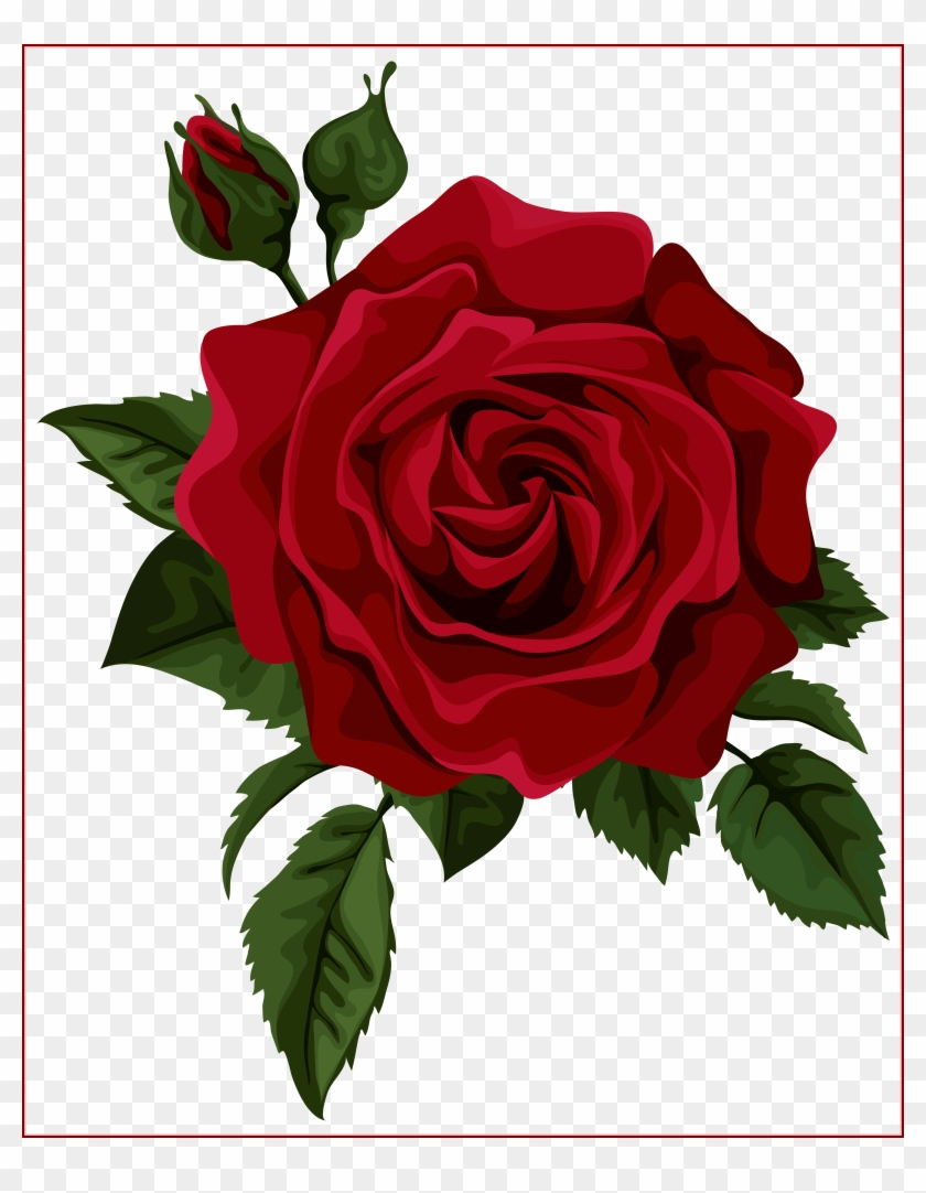 Beautiful Clipart Red Rose - Red Rose Vector #17774
