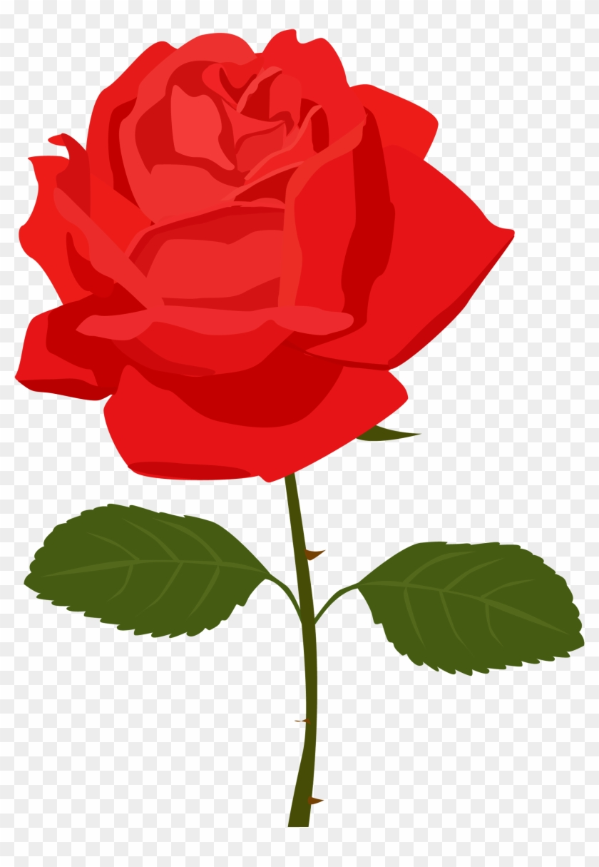 Red Rose Clip Art Free - Rose Clipart Transparent Background #17784