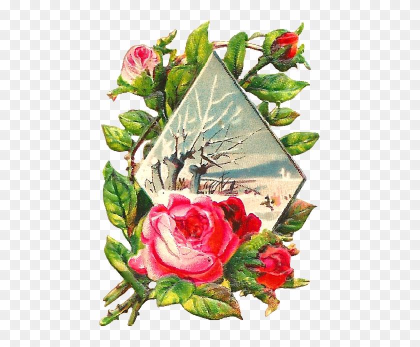 Pink Rose Clip Art - Clip Art #17804