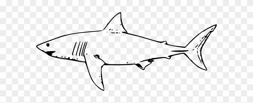 Shark Clipart Black And White #17873