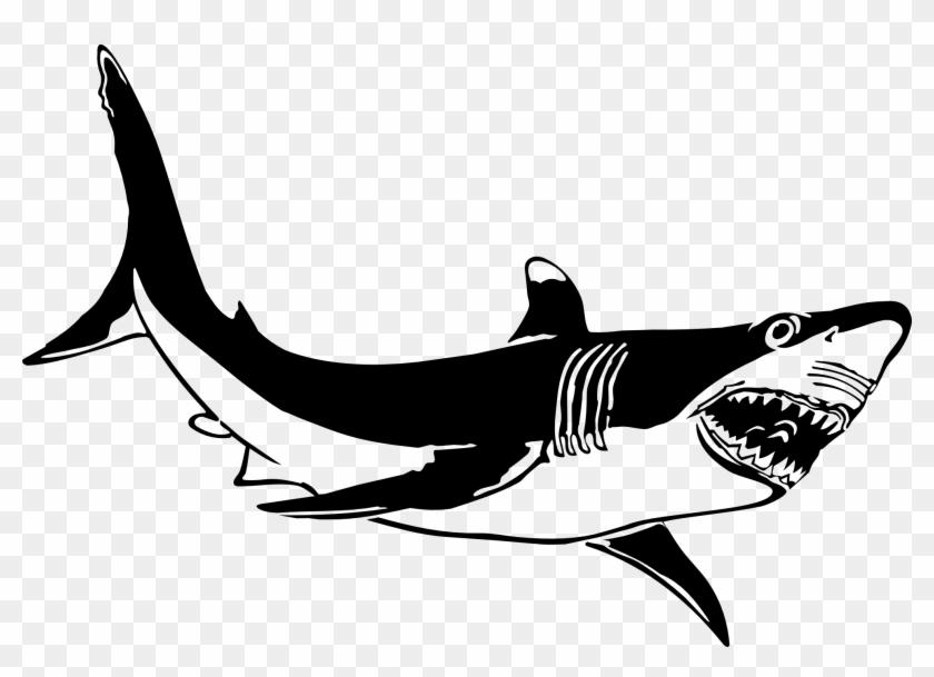Clipart Info - Great White Shark Clip Art #17891