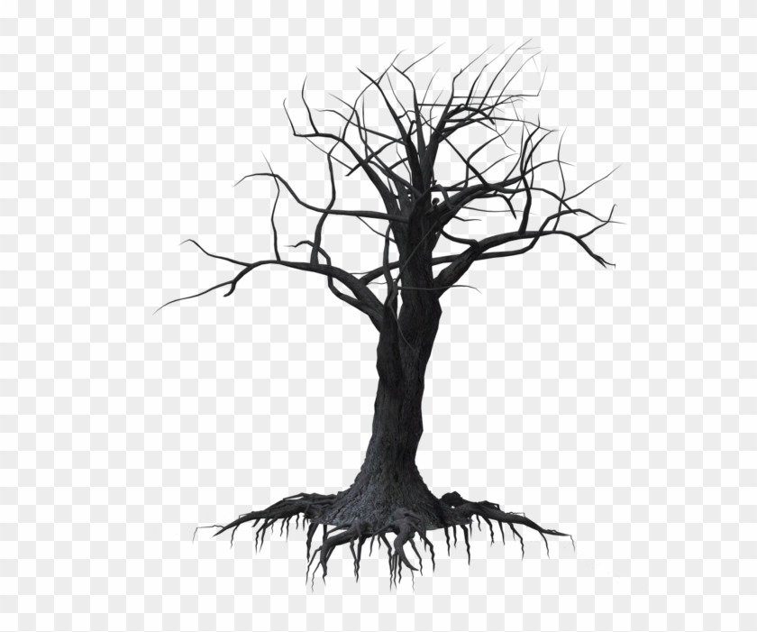 Creepy Tree 03 By Wolverine041269 On Clipart Library - Drawing #17900