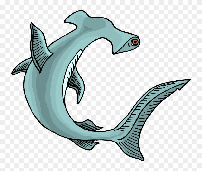 Shark Clipart - Hammerhead Shark Clipart #17908