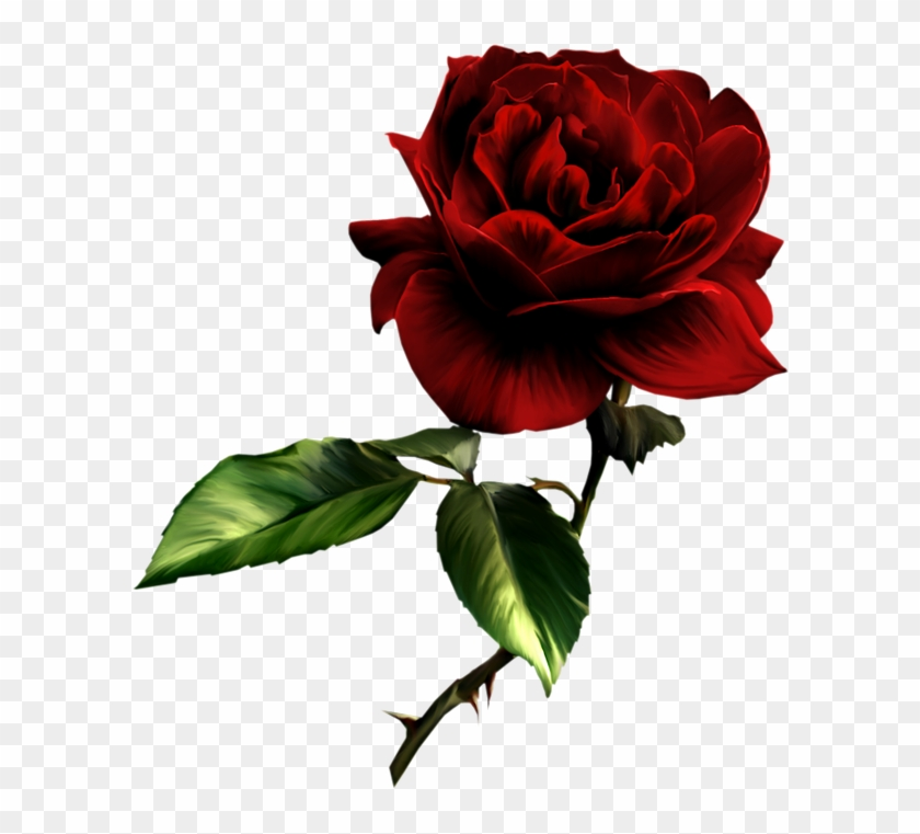 Painted Red Rose Clipart - Dark Red Rose Png #17921