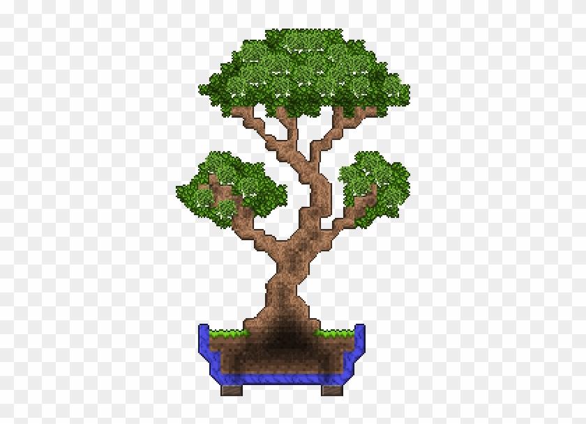 I Made A Bonsai - Oak #17974