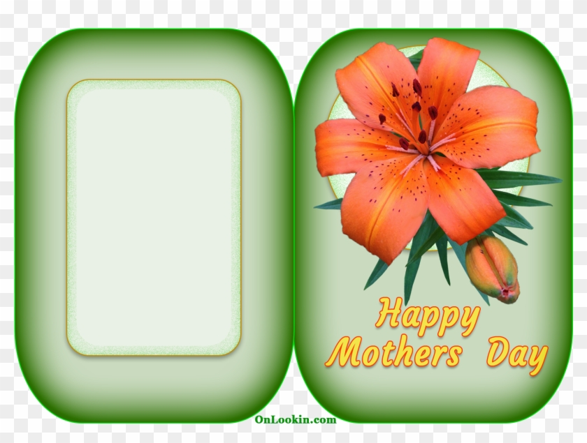 Happy Mothers Day Tiger Lily Flower - Happy Mothers Flower Cards #79831