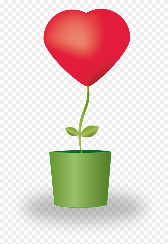 heart flower potted plants love mother s day vaso de flor com