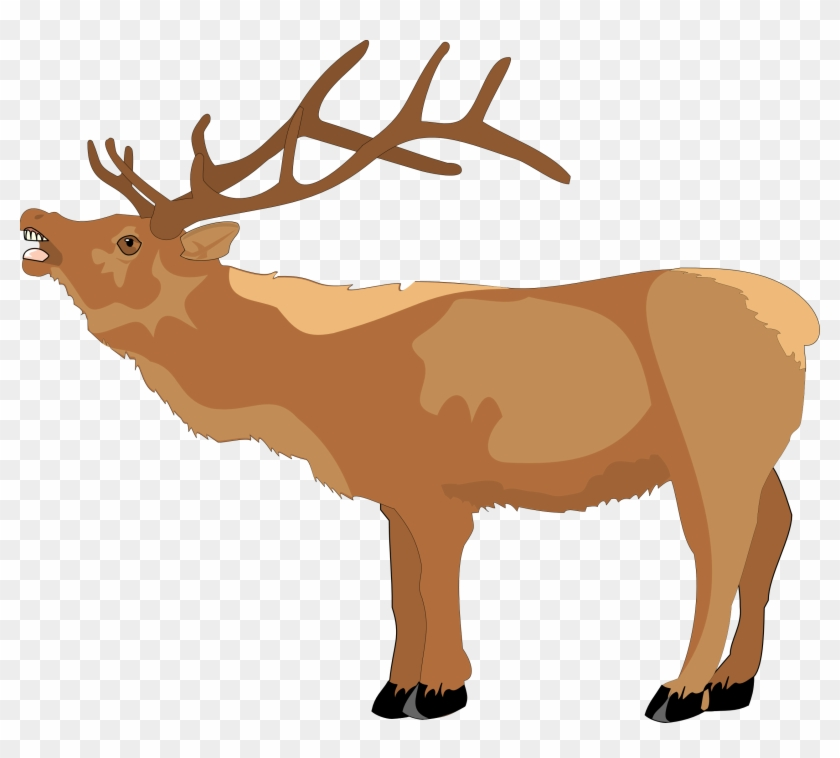 Raindeer Clipart - Clipart Library - Reindeer Clip Art #82638