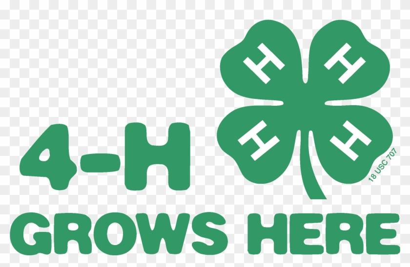 Green Grows Here - 4 H Grows Here Logo #462773