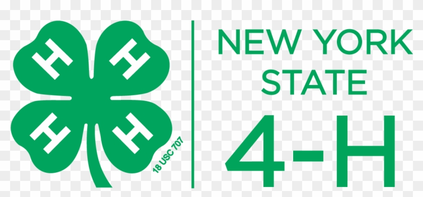 Nys 4 H Logo, Color, Vertical, Png - New York State 4 H #462813