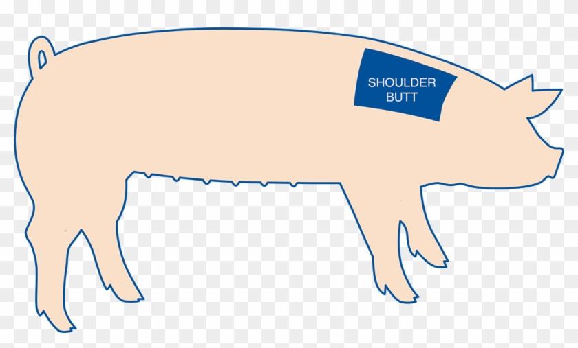 Pork Shoulder Is The Top Portion Of The Front Leg Of - Blade Steak On Pig #464006
