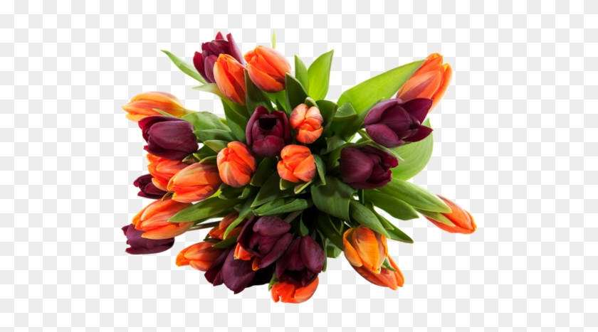 Png Lale Resimleri, Tulip Png Pictures - Flower Bouquet Image High Resolution #464677