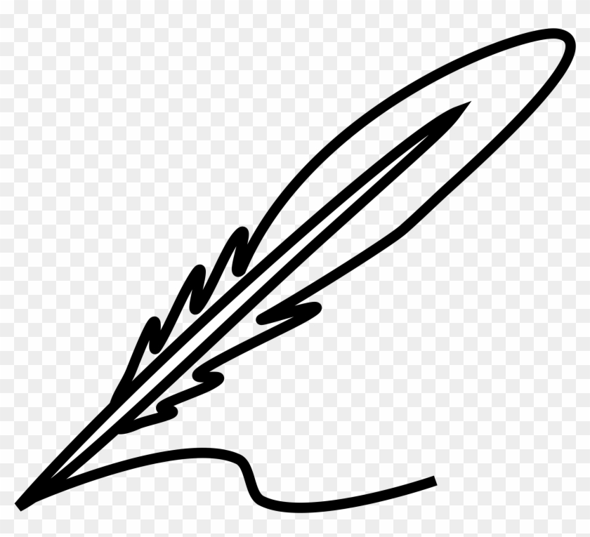 Top 10 Peterm Feather Pictures