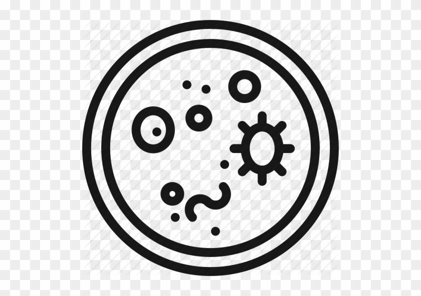Bacteria, Biology, Cup, Dish, Petri, Research, Science - Petri Dish #470695