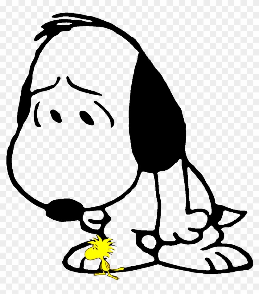Peanuts Cartoon, Peanuts Comics, Peanuts Gang, Funny   Sad Snoopy ...