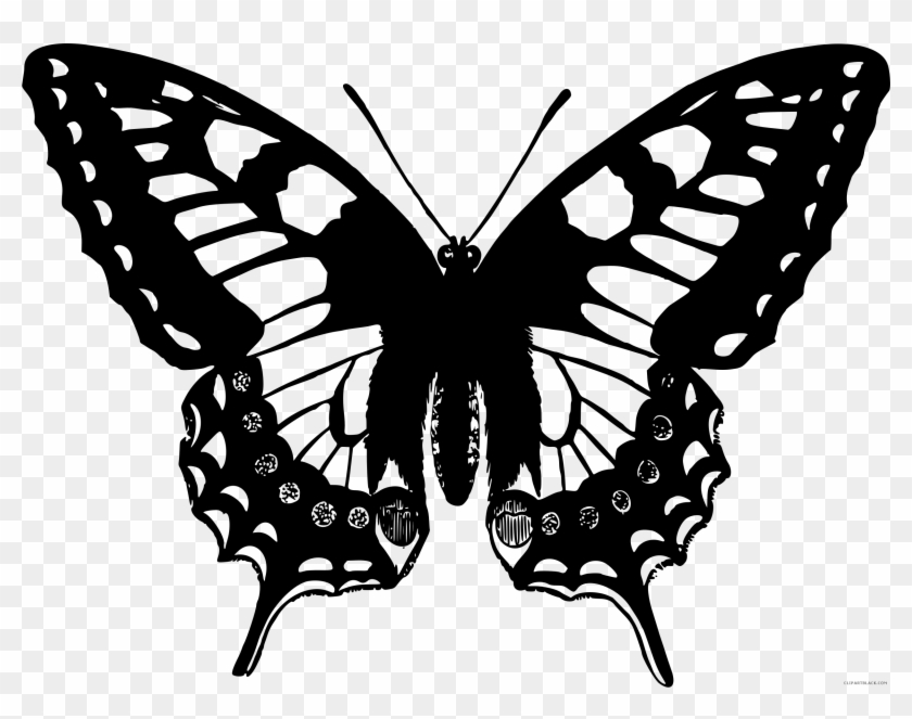 Black And White Butterfly Animal Free Black White Clipart - Swallowtail Butterfly Clip Art #472964