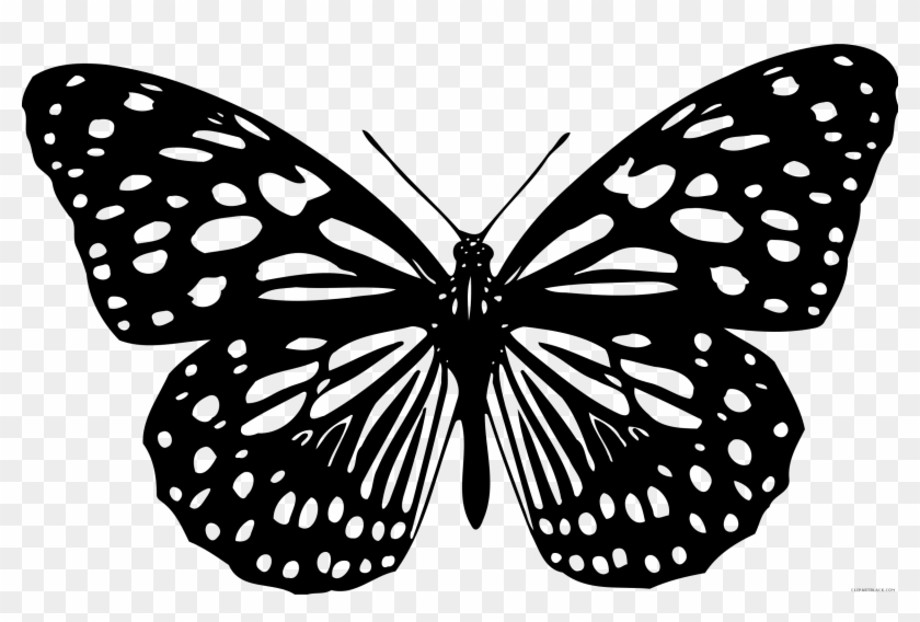 Black And White Butterfly Animal Free Black White Clipart