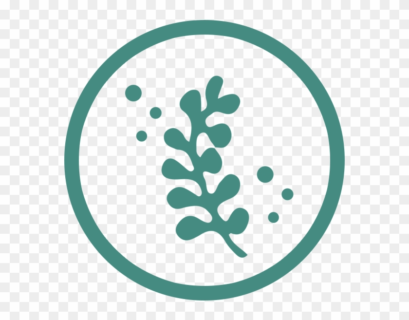 A Natural Solution - Seaweed Icon Png #477903