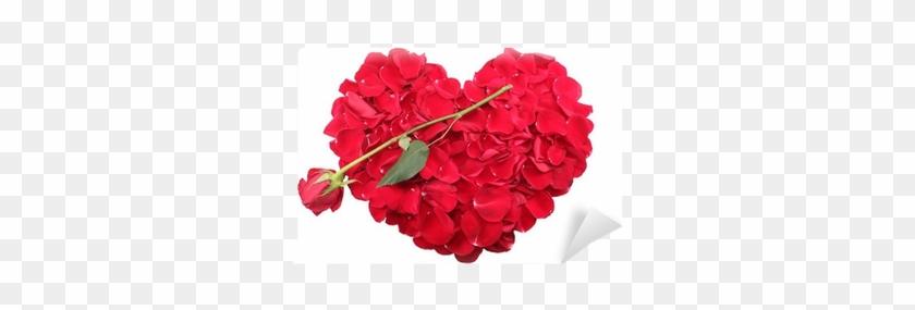 Heart Shape Of Red Rose Petals With A Red Rose Wall - Pétales De Rose En Coeur Et Flèche #478762