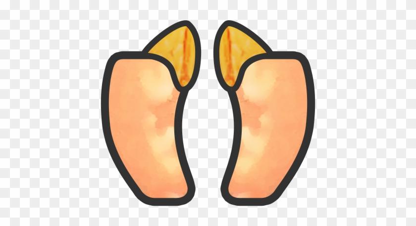 Pancreas- - Info Icon #482872