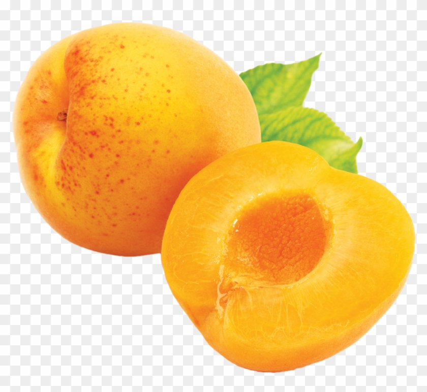 View & - Apricot Png #485835
