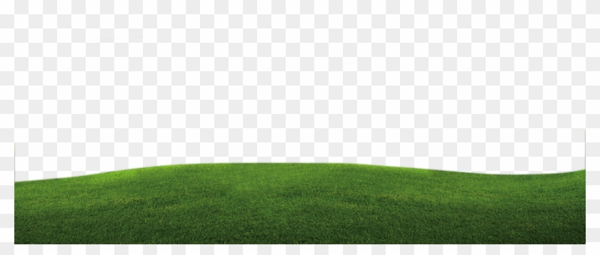 good day background padang rumput png free transparent png clipart images download good day background padang rumput png