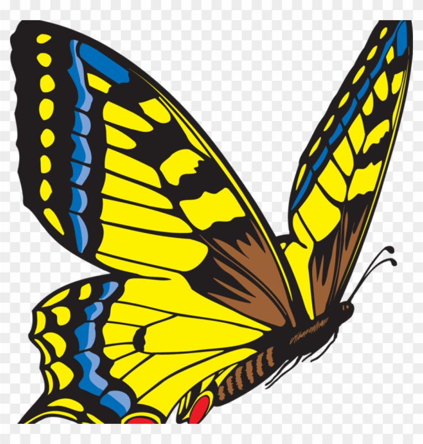 Butterfly Clipart Free Clipart Hatenylo Com Rh Hatenylo - Yellow Butterfly Clip Art #499389
