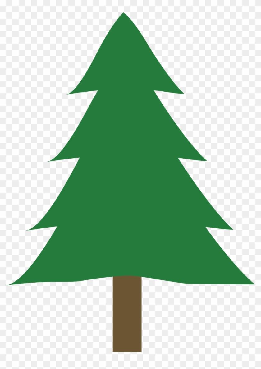 Branca De Neve - Draw A Small Tree #499932