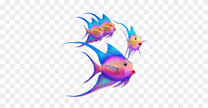 Image Du Blog Zezete2 - Coral Reef Fish #500950