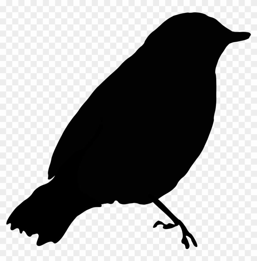 Clipart Of Black Bird Image Blackbird 1 Clip Art At - Draw A Black Bird #86005