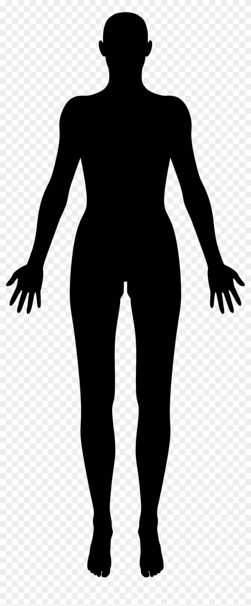 Clipart Female Body Part Of Slim Outline Royalty Free - Female Body Silhouette #86173