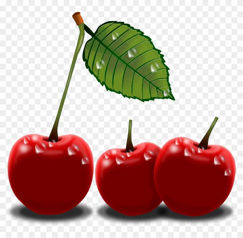 Realistic Cherries Clip Art - Cherry Png Clip Art #88244