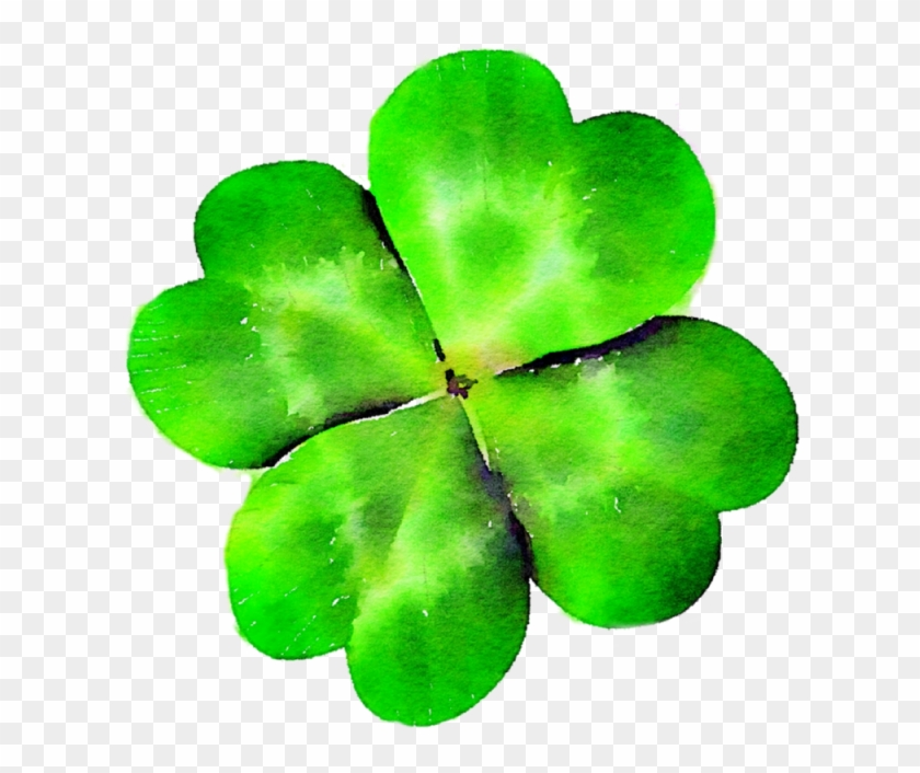 Four Leaf Clover, Clover, Green, St Patty's Day Png - クローバー #88936
